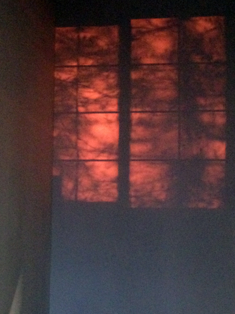 The red glow from sunset is projecting the shadow of the window and some trees onto the wall. The projection has been turned off.
